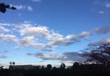 早朝の緑地公園から北の空をのぞむ