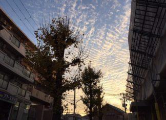 早朝の東の空 冬